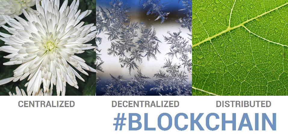 Startup Blockchain, projet Blockchain... Avez-vous réellement un use case Blockchain ?